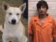 perro_y_amo_delincuente