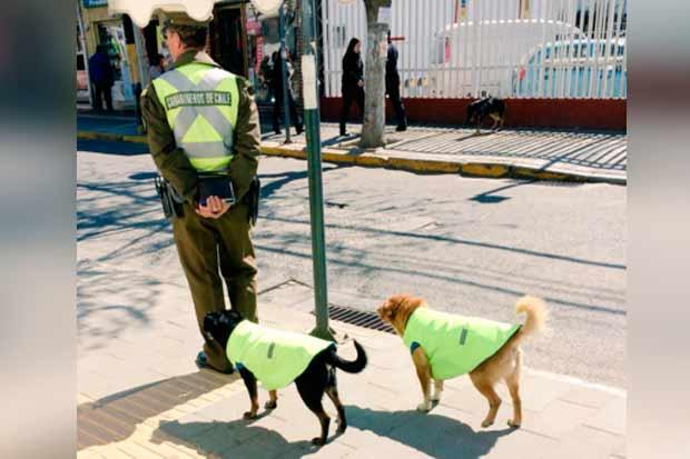 de-callejeros-a-policias