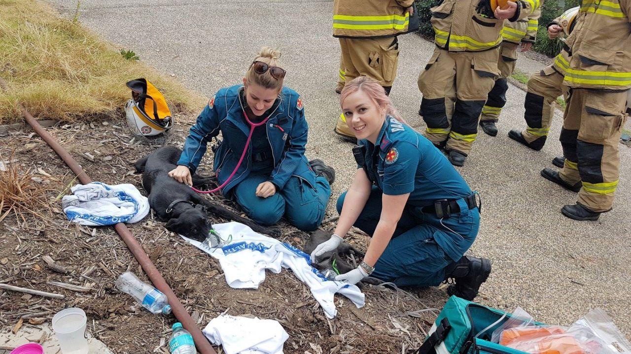 incendio-paramedicos-holden-chip